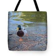 Swim Break Tote Bag