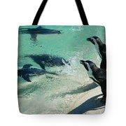 Swim Race - African Penquins Tote Bag