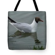 Swimming Gull Tote Bag