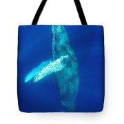 Swimming Humpback Tote Bag