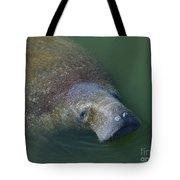 Swimming Manatee Tote Bag