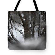 Swirling Into Winter Tote Bag