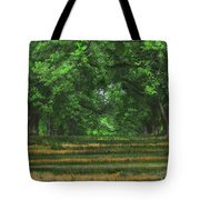 Swirls And Stripes Tote Bag