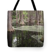 Swirls In The Swamp Tote Bag