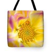 Swirly Dahlia Tote Bag by Kathy Yates