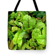 Swiss Chard In A Vegetable Garden 4 Tote Bag