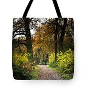 Swithland Woods, Leicestershire Tote Bag