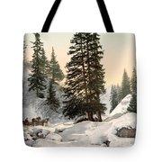 Switzerland: Davos, C1895 Tote Bag