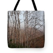 Sycamore Canyon Trail In Rain Tote Bag