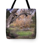 Sycamore Grove Fall Tote Bag