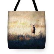Sycamore Grove Series 2 Tote Bag by Carol Groenen