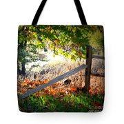 Sycamore Grove Series 8 Tote Bag