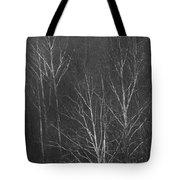 Sycamore Series 1 Tote Bag