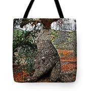 Sycamore Tree And Fall Leaves Tote Bag