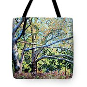 Sycamore Trees At The Zoo Tote Bag
