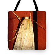 Sycamore Tussock Moth Tote Bag