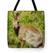 Symbol Of The Rabbit Tote Bag