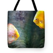 Symphysodon Discus Fishes Tote Bag