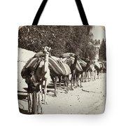 Syria: Caravan, C1900 Tote Bag