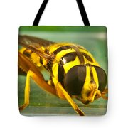 Syrphid Eye To Eye Tote Bag