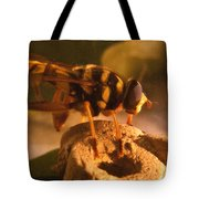 Syrphid Fly On Fossil Crinoid Tote Bag