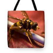 Syrphid Fly Poised Tote Bag