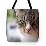 Tabby Cat Portrait Tote Bag