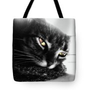 Tabby Cat Selective Color Tote Bag