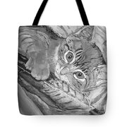 Tabby Kitten Tote Bag