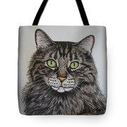 Tabby-lil' Bit Tote Bag