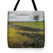 Table Mountain Landscape Tote Bag