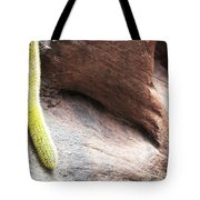 Tail Of The Cactus Tote Bag