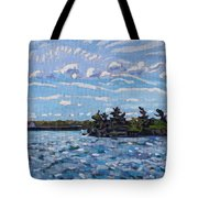 Tail Wind Tote Bag