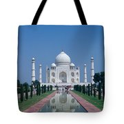 Taj Mahal View Tote Bag