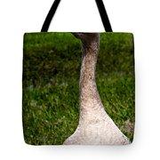 Take A Gander Tote Bag