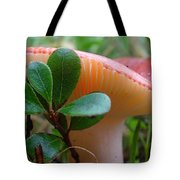 Take A Moment...be Mindful. Tote Bag