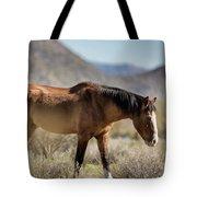Take  A Walk On The Wildside  Tote Bag
