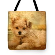 Taking A Break Tote Bag by Angie Tirado