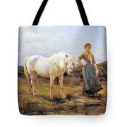 Taking A Horse To Water Tote Bag