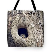 Taking A Peek Tote Bag