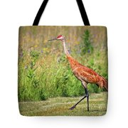Taking A Stroll Tote Bag