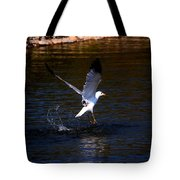 Taking Flight Tote Bag by Amanda Struz