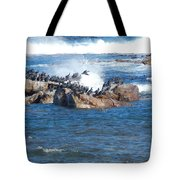taking flight Capetown Tote Bag