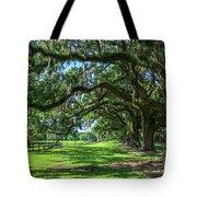 Tale Of The Oaks Tote Bag