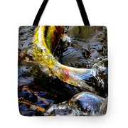 Tale Of The Wild Koi Tote Bag