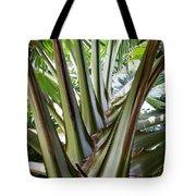 Talipot Palm Tote Bag