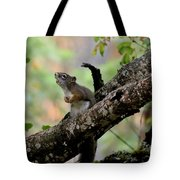 Talking Squirrel Tote Bag