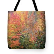 Tall And Wide Tote Bag