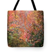 Tall Colors Tote Bag