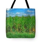 Tall Corn Tote Bag
